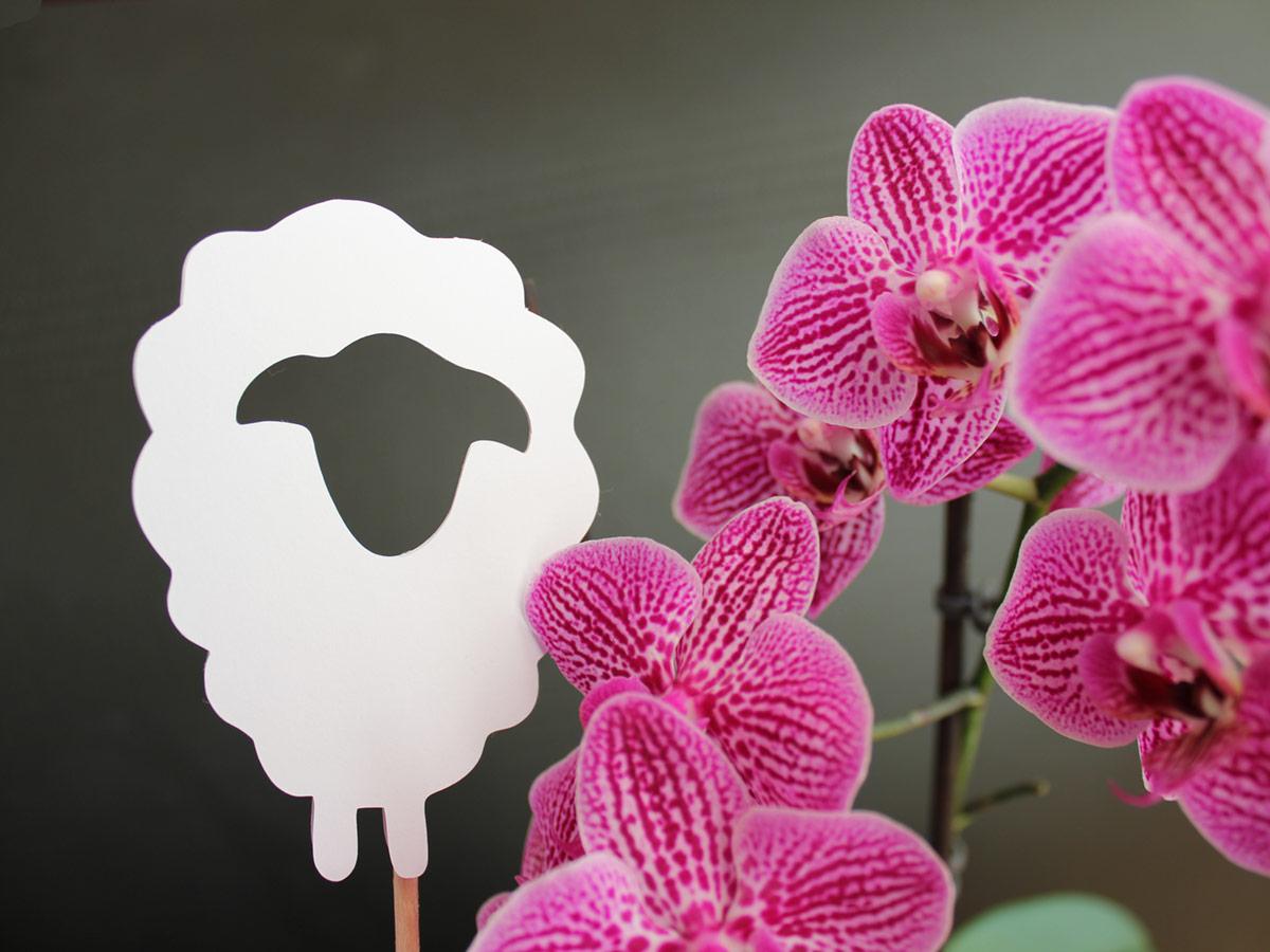 Die schnörkellosen Blumenstecker passen zu den großen Orchideenblüten wie auch zu den kleinen Schneeglöckchen.