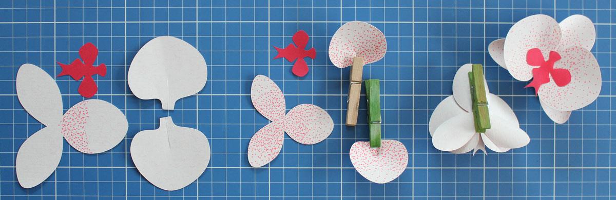 Bastelanleitung Orchideenblütte: Alle Schritte im Überblick.