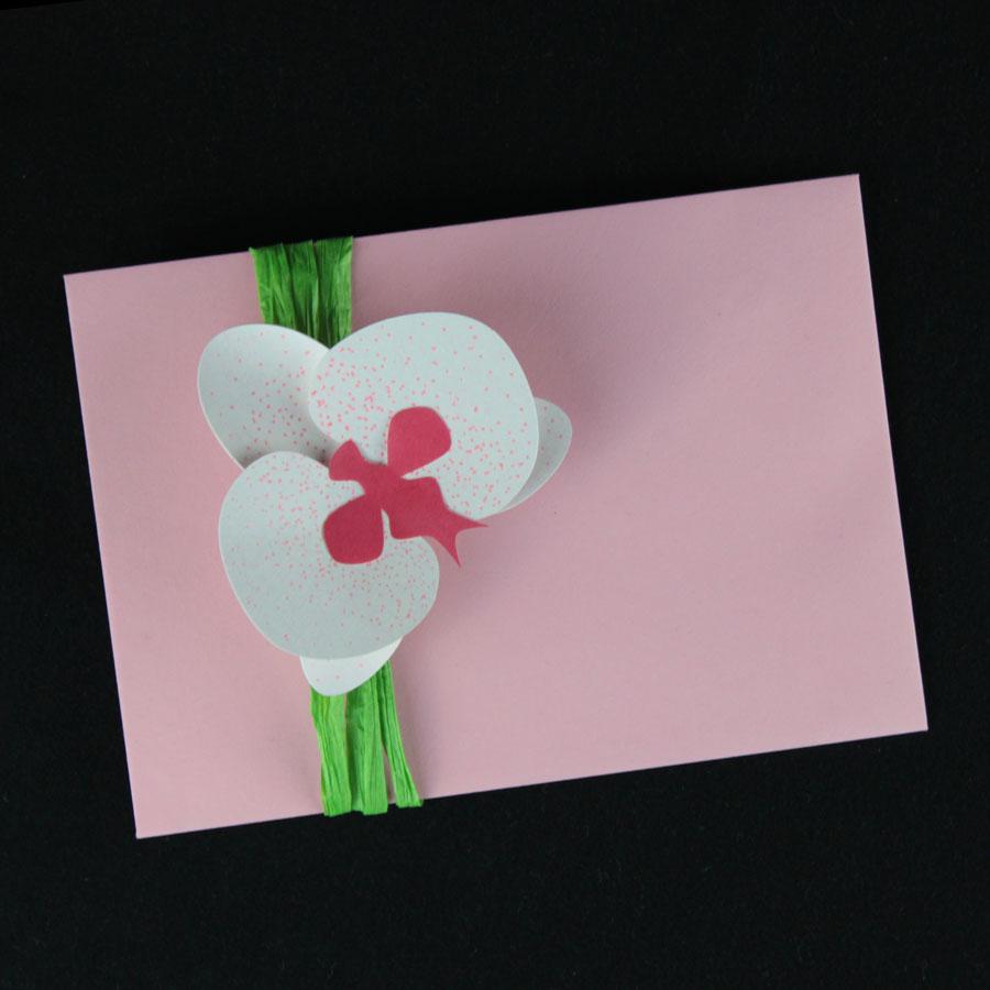 Die Orchideenblüte macht sich auch gut als Geschenk-Deko.