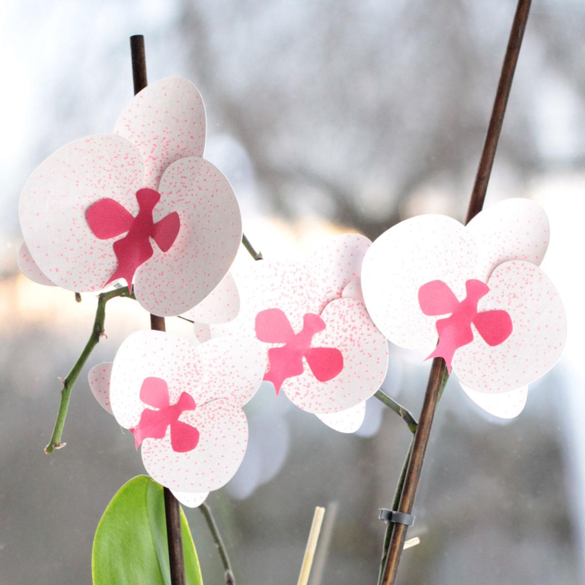 Plotterfreebie Orchideenblüten