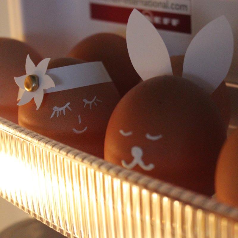 ... auch im Kühlschrank machen die Ostereier-Köpfe eine gute Figur! :-)